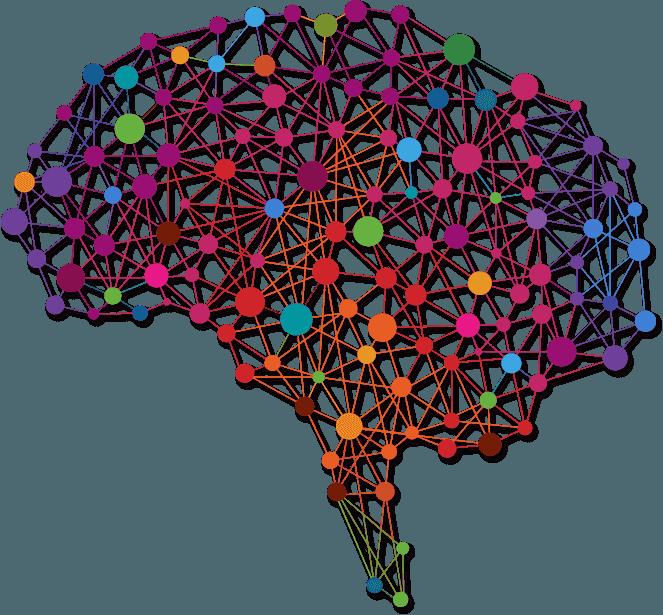 brain-img